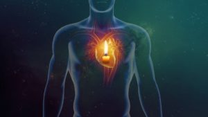 Close Up Picture of A Person's Heart Diagram